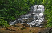 Saluda Photos - Pearson Falls  Saluda North Carolina by Willie Harper