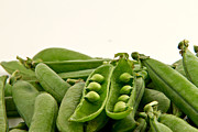 Preservation Photos - Peas by Gert Lavsen