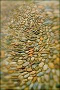 Rick  Monyahan - Pebbles