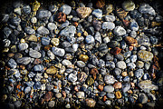 Gravel Posters - Pebbles under water Poster by Elena Elisseeva