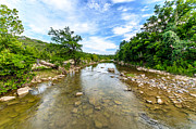 Hamilton Texas Prints - Pedernales River Print by David Morefield
