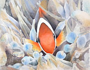 Scuba Paintings - Peek-A-Boo by Lisa Pope