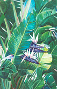 Strelitzia Painting Framed Prints - Peek A Boo Whitebird  Framed Print by Susan Duda