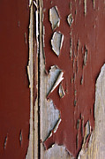 Crackle-pattern Framed Prints - Peeling Paint Framed Print by Carlos Caetano