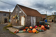 Shed Photo Prints - Peggys Cove 15 Print by Betsy A Cutler East Coast Barrier Islands