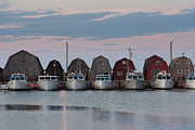 Boat Shed Prints - PEI Malpeque Harbour Print by Matt Dobson