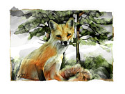 Fox Mixed Media - P.E.I. Red Fox by Bob Salo