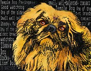 Front View Digital Art Posters - Pekingese - Worded Poster by Marlene Watson