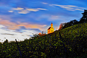 Blue Grapes Photos - Pekrska gorca hill by Ivan Slosar