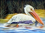 Migratory Bird Painting Framed Prints - Pelican At East Pearl Framed Print by Phyllis Beiser