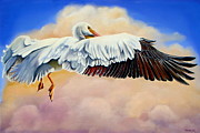 American White Pelican Painting Posters - Pelican in the Clouds Poster by Phyllis Beiser