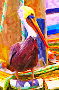 Wing Tong Digital Art Posters - Pelican On The Dock Poster by Wingsdomain Art and Photography