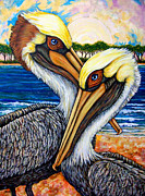 Sea Birds Posters - Pelican Pair Poster by Sherry Dole