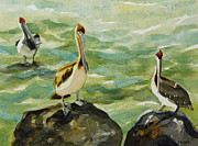 Julianne Felton - Pelicans by Julianne...