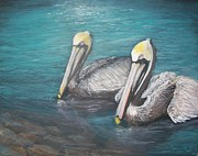 Jeremy Reed - Pelicans in the Water