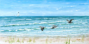 Flying Seagull Painting Framed Prints - Pelicans on Crescent Beach Framed Print by Bruce Alan