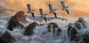 Marte Thompson - Pelicans Rock