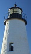 Amazing Jules - Pemaquid Lighthouse