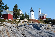 Pemaquid Lighthouse Framed Prints - Pemaquid Lighthouse Framed Print by Elaine Wood