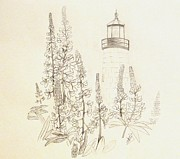 Pemaquid Lighthouse Drawings Metal Prints - Pemaquid Lighthouse Metal Print by Howard Elliott