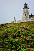Rainy Day Photos - Pemaquid Point by Karol  Livote
