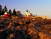 Pemaquid Lighthouse Posters - Pemaquid Point Light Poster by Nick Zelinsky