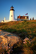 Maine Shore Framed Prints - Pemaquid Point Lighthouse Framed Print by Brian Jannsen