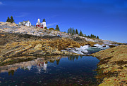 Gorgeous Photos - Pemaquid Point Lighthouse by Marcia Colelli