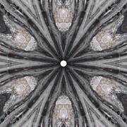Trina Stephenson - Pemaquid Rock Two