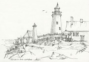 Seagull Drawings Originals - Pemaquid Serenity by Michael Shegrud
