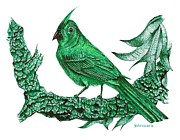 Birds Drawings - Pen and Ink Drawing of Green Bird by Mario  Perez