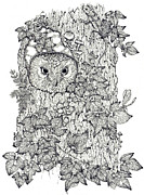 Donna Genovese Metal Prints - Pen and Ink Owl Metal Print by Donna Genovese