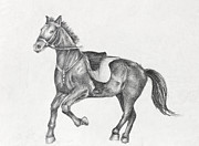 Graphic Drawings - Pencil Drawing of a Running Horse by Kiril Stanchev