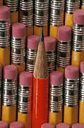 Office Decor Prints - Pencils Print by Anonymous