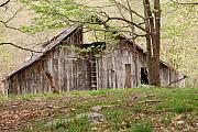 Farm Structure Prints - Pendleton County Barn Print by Randy Bodkins