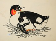 Penguin Drawings - Penguin Baby by Michelle Hand