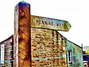 Cindy Nunn - Pennine Way Signpost