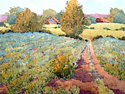 Pastoral Vineyards Painting Posters - Pennsylvania Idyll Poster by Joyce Hicks