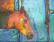 Arabian Horses Mixed Media - Pensive by Judith Rothenstein-Putzer