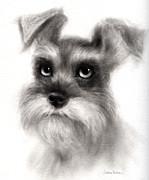 Pensive Schnauzer Dog Painting Print by Svetlana Novikova