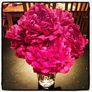 Garden Art - Peonies From The Garden by Adam Romanowicz