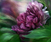 Burgundy Posters - Peony - 50 Shades Of Black Poster by Carol Cavalaris