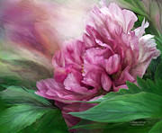 Carol Cavalaris Art - Peony - 50 Shades Of Pink by Carol Cavalaris