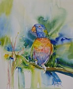 Parrot Print Paintings - Pepe the Parrot by Donna Acheson-Juillet
