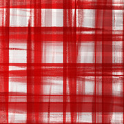 Andee Photography - Peppermint Plaid 1 Abstract