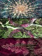 Walter Oliver Neal - Perceptive Illumination