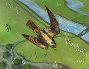 Fast Paintings - Peregrine Falcon by ACE Coinage painting by Michael Rothman