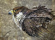 Amate Bark Paper Prints - Peregrine Falcon Print by Anne Shoemaker-Magdaleno