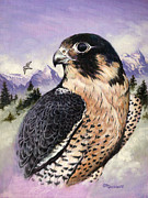 Raptor Paintings - Peregrine Falcon by Richard De Wolfe