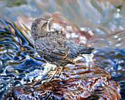 Perfect Camouflage  Print by Dianna Ponting